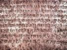 नेपाल भाषा परिषद्को अध्यक्षमा शाक्य